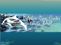 Dolphin Dive Center Buceo