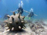 Museum diving