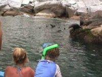 Toda la familia en snorkel
