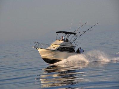 Vista Sea Sport