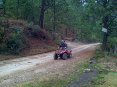 Taitos Choice ATVS