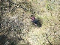 Vuela en canopy