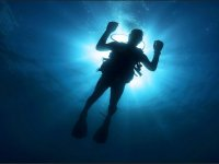 Discover Pacific diving