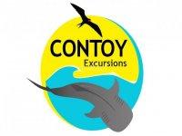 Contoy Excursions Nado con Tiburón Ballena