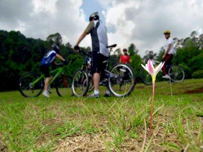 Rodavento Ciclismo de Montaña