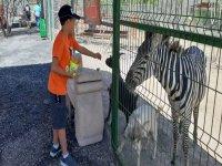 Safari in Monterrey by zoo