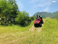 Wild environment four-way tour Monterrrey