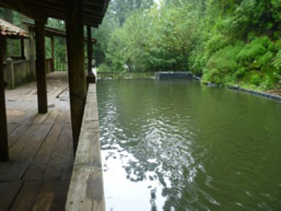 Parque Ejidal San Nicolás Totolapan Pesca