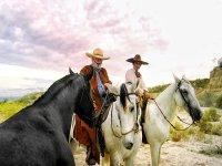 Entrenador de caballos