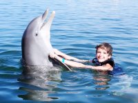 Hugging the dolphin