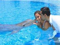 Disfrutando con el delfin