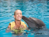 Knowing dolphins