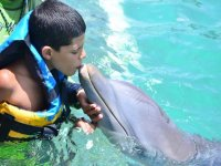 the little ones enjoying with our dolphins