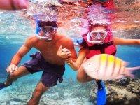 snorkeling in pairs