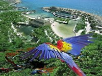 Xcaret from the sky