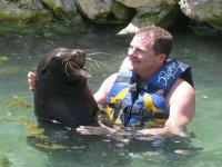 Embracing sea lion
