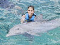 Swimming with loving dolphins