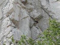 Natural rock walls