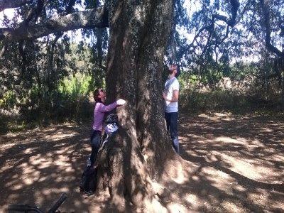 Bike route to the wish tree, Huasca