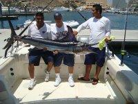 Marlin en los cabos
