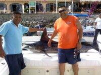 Marlin rayado