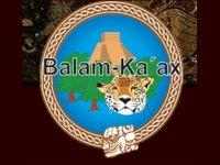 Ecoturismo Balam Ka-ax Caminata