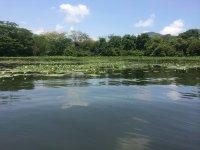walking through the lagoon