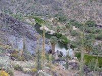 La Bocana Geotourism