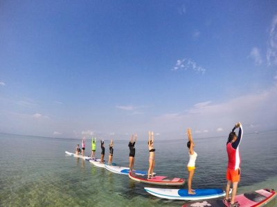 Stand up Paddle rental for 1 hour