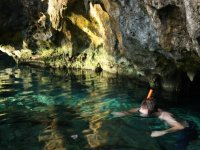 Snorkel Tour in 2 natural pools. Selva Maya