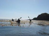 Discover kayaking down