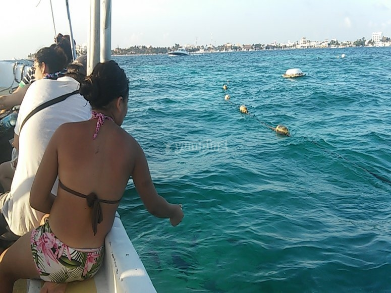 acercate al mar
