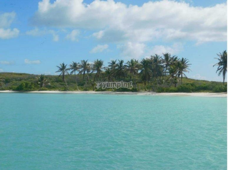 Maravillosas aguas turquesas en el caribe mexicano