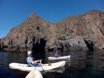 Baja Blue Diver