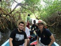 excursion through the mangroves