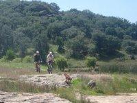 Oferta Ruta Ciclismo de Monta�a 12 km Nuevo Valle Moreno