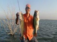 Pesca a la par
