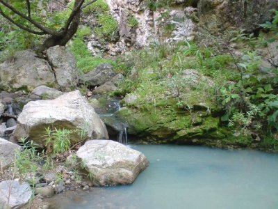 Caminata guiada Río Milpillas