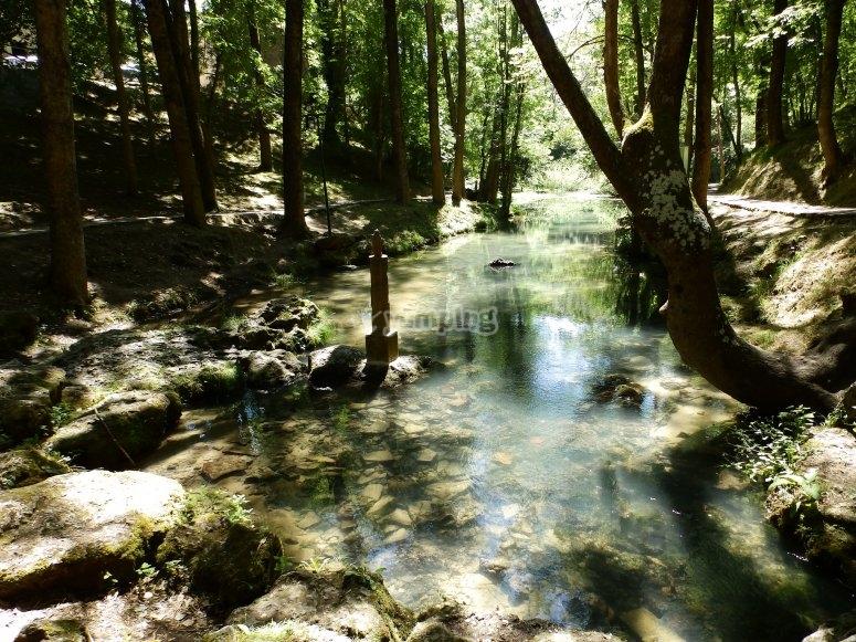 rios tranquilos