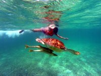 Oferta Visita a Akumal y snorkel con tortugas y en cenote