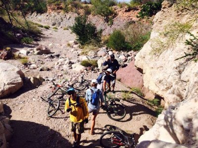 Mountain bike rental in San Carlos 1 day