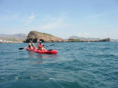 Renta de kayak doble 1 día en San Carlos