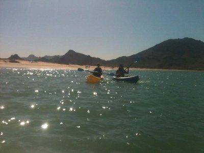 Kayak renting, 1 hour San Carlos.