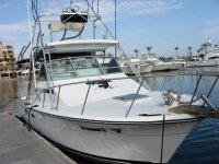 Boat renting