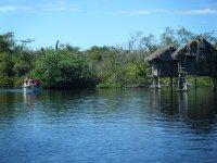 San Blas Jungle