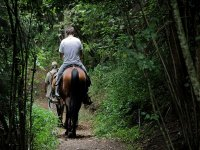 Horse ride in Valle de Bravo
