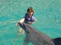 Juego con delfines