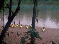 Selva chiapaneca