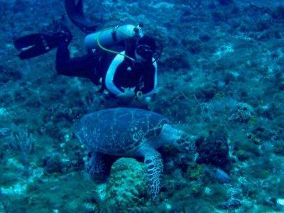 Curso Certificación Advanced Open Water Diver PADI