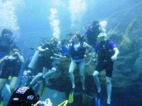 Group dive